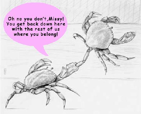 b0fefebec3cf5760476a3c8ca20d45c3--crab-mentality-the-crab